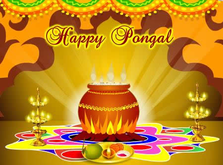 Happy pongal 2016 fb profile pic whatsapp dp (1)