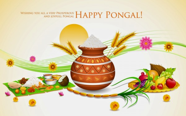 Happy pongal hd 3d wallpapers (2)
