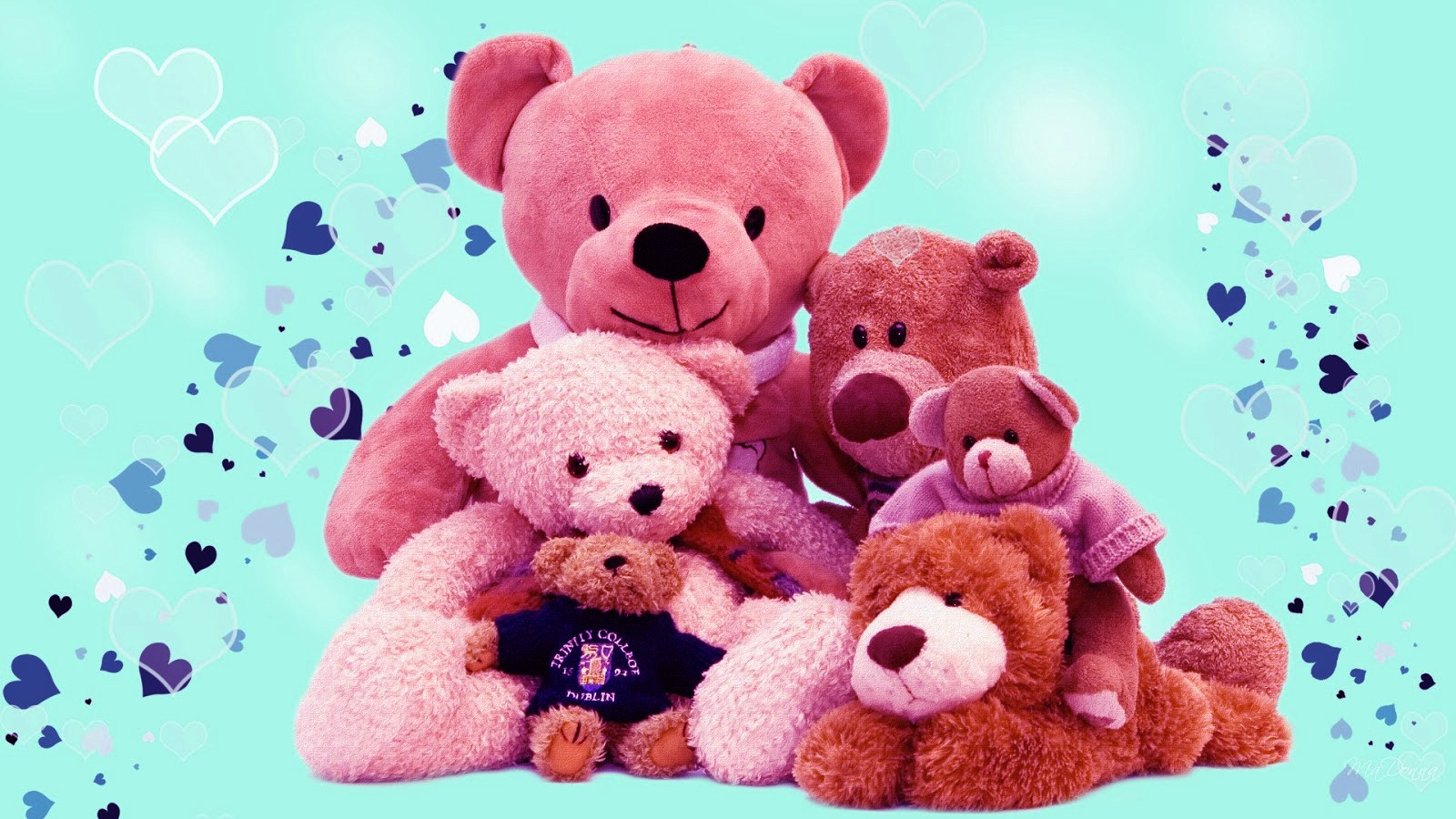 Happy Teddy Day 2017 Images wallpaers pictures (14)