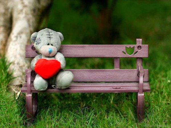Happy Teddy Day 2017 Images wallpaers pictures (17)