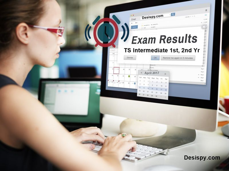 ts intermediate results 2017