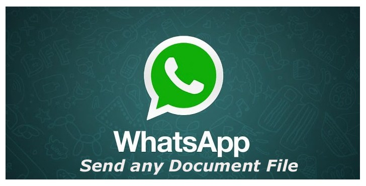 WhatsApp to support all file types such as PDF, DOCX, DOC, PPT on Android & iOS Gadgets