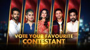 Bigg Boss Telugu Winner Name & Cash Prize – Watch Grand Finale Live Online @ Maa Tv, Hotstar
