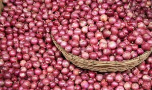 Income Tax Raids on Maharashtra Onion Traders