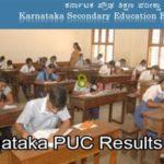 karnataka puc results 2019